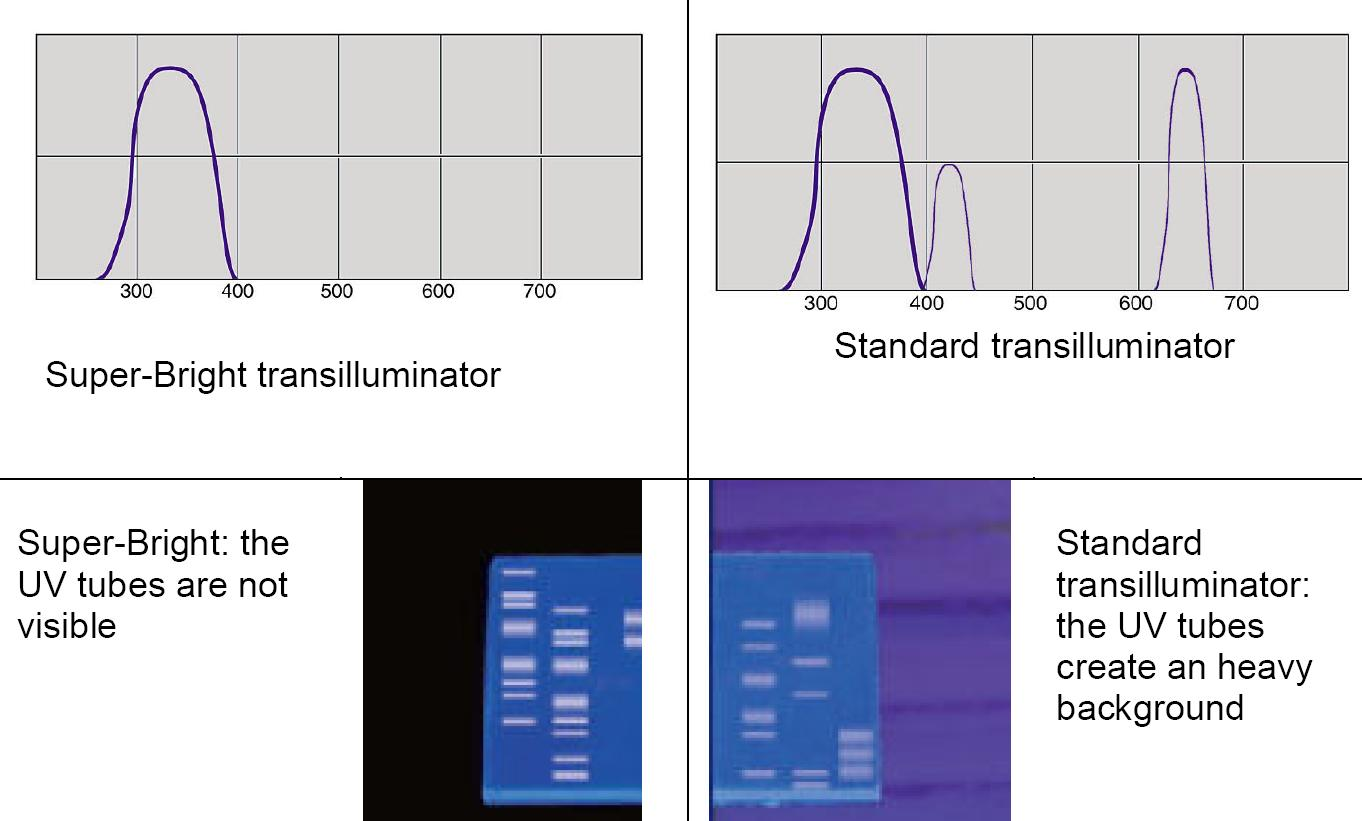 superbrigt vs standard